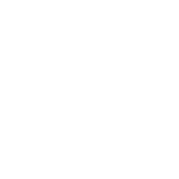 UI INTERNATIONAL